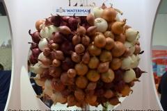 Fruit_Logistica_2018_Cebulowe berło Watermna Onions