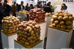 Fruit_Logistica_2018_Jak to się trzyma_ziemniaki