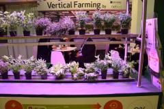 Farmy wertykalne przyszłością ogrodnictwa?