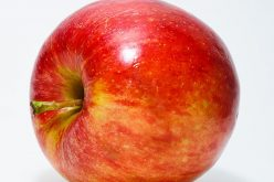 Wstępna prognoza zbiorów jabłek i gruszek w Polsce – TRSK