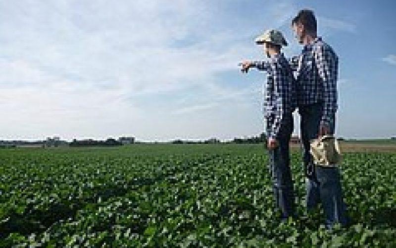 ARiMR wypłaicło rolnikom już prawie 13 mld zł za 2015 rok