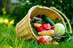 Owoce i warzywa z uprawy ekologicznej i konwencjonalnej – czym się różnią?