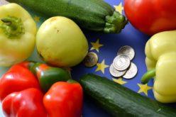 UWAGA! Producenci od dziś mogą wnioskować o wycofywanie owoców i warzyw z rynku