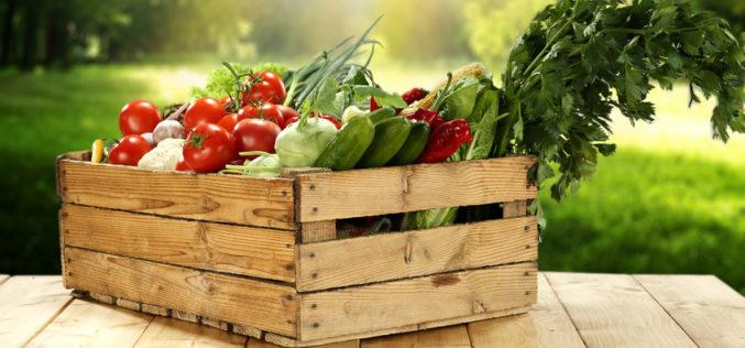 Państwowa Inspekcja Bezpieczeństwa Żywności w 2018 r. ?