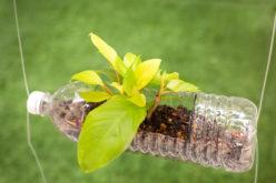 Odpady plastikowe w gospodarstwie ogrodniczym