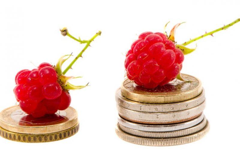 Zmiana w dopłatach do produkcji rolnej