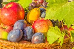 Kierunki eksportu świeżych owoców z Polski