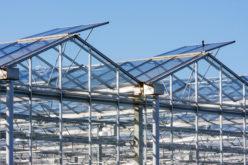 Szkło dyfuzyjne – inwestycja w przyszłość