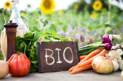 Certyfikacja gospodarstw ekologicznych krok po kroku