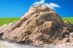 Rola nawożenia organicznego w utrzymaniu żyzności gleby