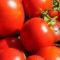 Standardy pomieszczeń do magazynowania pomidorów