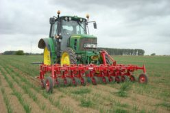 Jakim ciągnikiem na pole warzyw?