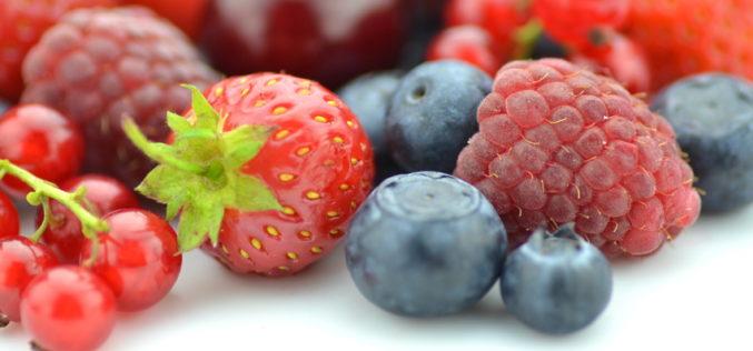 Czy warto inwestować w polski rynek owoców jagodowych? (cz. 1) – Jak wygląda polski rynek owoców jagodowych?