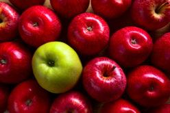 Ceny jabłek wyższe niż przed tygodniem?