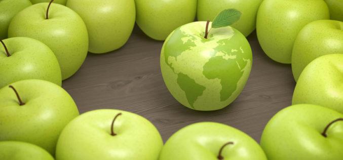 Gdzie eksportujemy polskie jabłka?