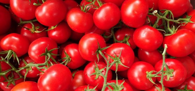 W 2017 r. spadnie produkcja polskich pomidorów?