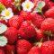 2017 rok przyniesie wysokie ceny truskawek w skupie?