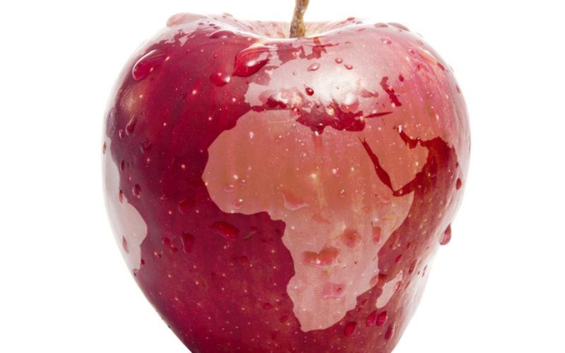 Rośnie eksport jabłek poza granice UE?