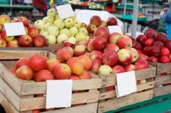 Ceny jabłek znów poszybowały w górę. Nawet o 55%. A to dopiero początek?
