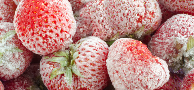 Mniejszy eksport mrożonych truskawek