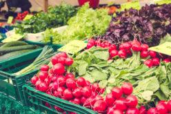 Ceny warzyw zbyt niskie w stosunku do kosztów produkcji?