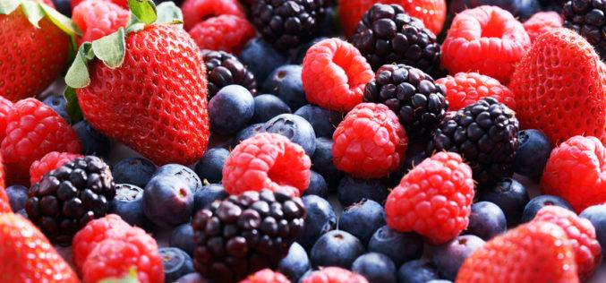 Sezon 2017/18 w produkcji owoców jagodowych – podsumowanie