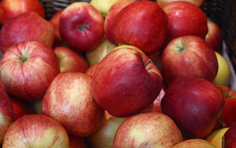 Maleje eksport jabłek w UE