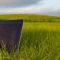 Program do zarządzania gospodarstwem usprawnia produkcję warzyw gruntowych?