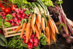 Ceny warzyw wyższe niż przed rokiem