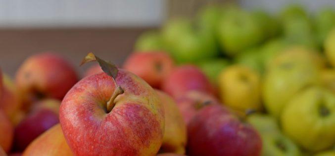 Wolumen obrotu jabłkami mniejszy niż się spodziewano