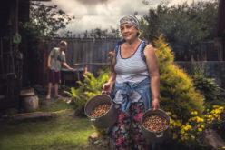Rolnicy stracili swój przywilej. Zmiany w zasadach ubiegania się o emeryturę rolniczą