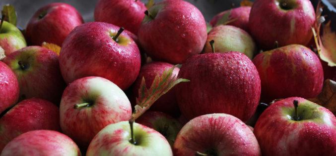 Kolejny tydzień wzrostu cen jabłek