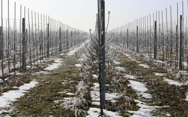 Zima – w oczekiwaniu na nowy sezon