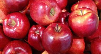 Niskie zapasy jabłek na unijnym rynku