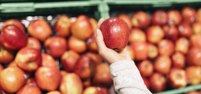 Trudności z eksportem odbiły się na cenach jabłek?