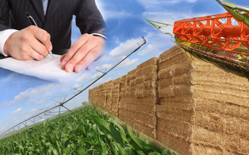 Umowy na dostarczanie produktów