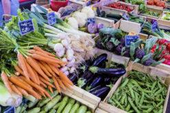 Produkcja ekologiczna warzyw w Polsce – szansą dla ogrodników