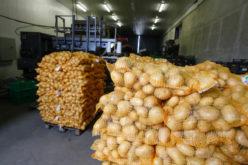 Innowacyjne metody przechowywania warzyw i owoców