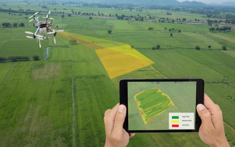 Cyfrowe mapowanie gleby, do czego może się przydać?