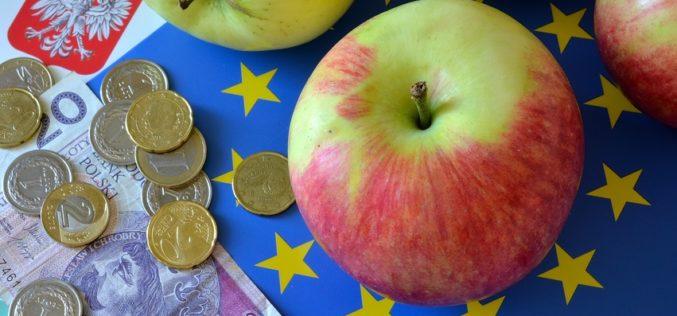 Handlowcy narzekają na mniejsze wysyłki zagraniczne jabłek
