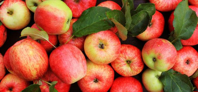Hossa na rynku jabłek