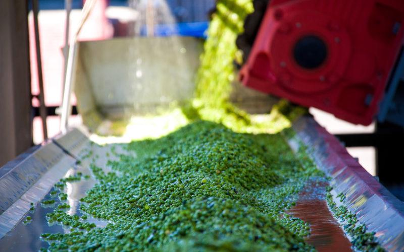 Konserwacja maszyn w przemyśle i zbiorników owocowo-warzywnym