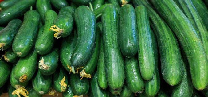 Wzrosły średnie ceny ogórków