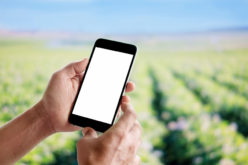 Najnowsze osiągnięcia naukowe dla ogrodnictwa – baza genów agrofagów z czytnikiem DNA w smartfonie
