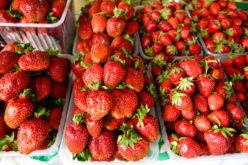 Rozpoczął się sezon truskawkowy – gdzie najdrożej?