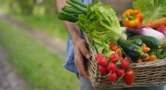 Pierwsze dostawy krajowych warzyw -jakie ceny?
