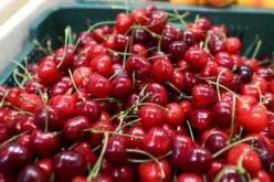 Tegoroczny urodzaj czereśni przełożył się na niskie ceny tych owoców
